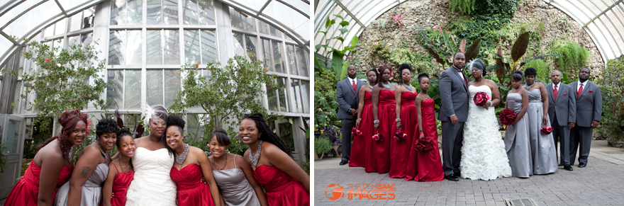 Bridal Party in the green house